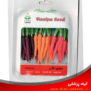 بذر هویج رنگی شیرین ایرانی