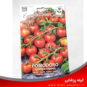 بذر ۷۰۰تایی گوجه فرنگی گلخانه ای ایتالیایی