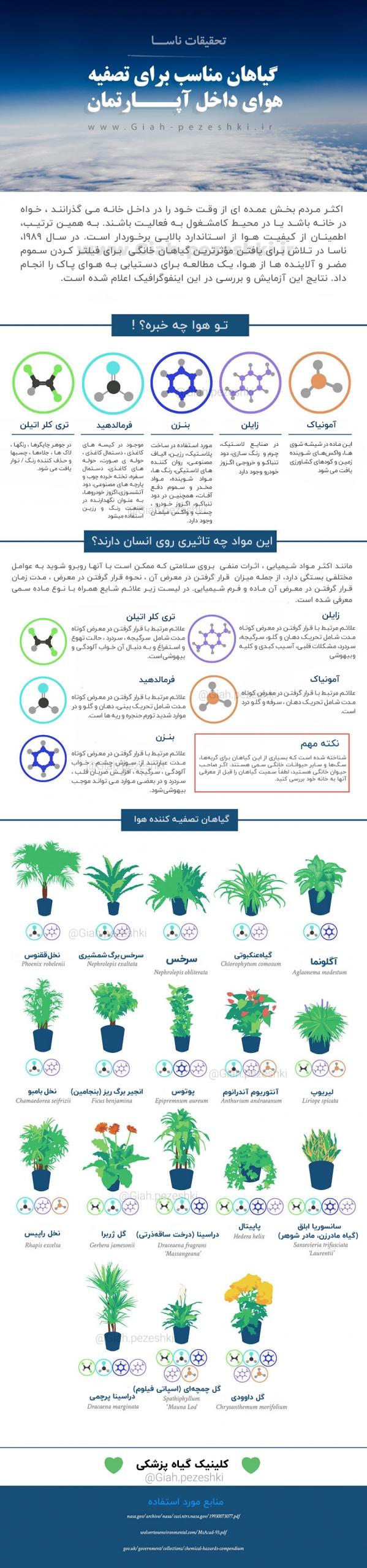 گیاهان تصفیه کننده هوا، گیاهان آپارتمانی