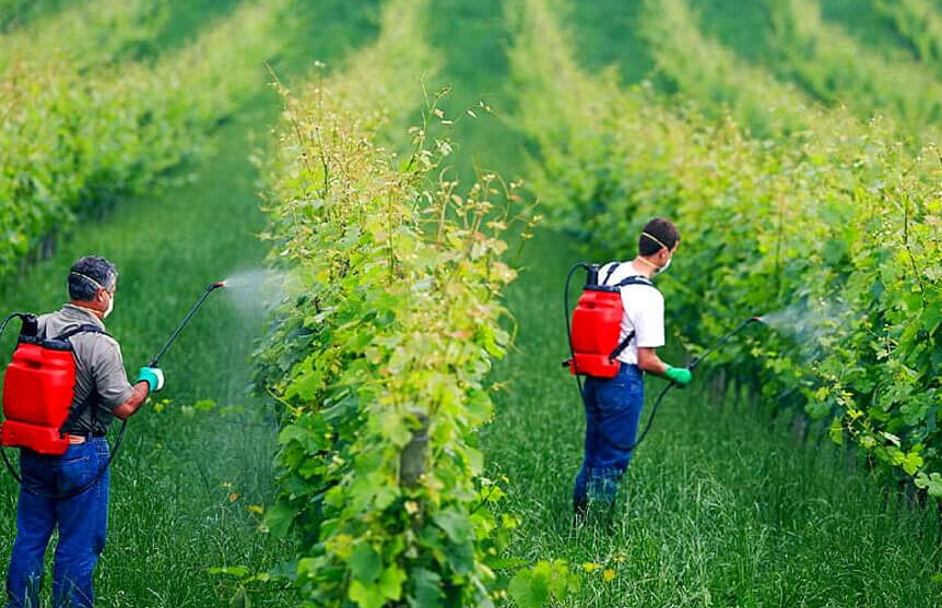 فرمولاسیون کشاورزی, انواع فرمولاسیون سموم کشاورزی