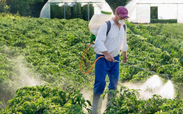 راهنما و نکات سمپاشی گیاهان – سمپاشی آگاهانه – قسمت ۲