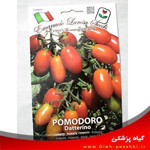 بذر گوجه فرنگی گیلاسی گلخانه ای ایتالیایی